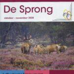 cover van De Sprong, het magazine van RPV Randmeren van oktober en november 2020 met een artikel over de rolstoelsticker van Ralph Stoové
