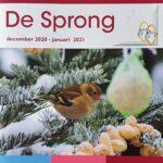 cover van De Sprong december 2020 - januari 2021, het magazine van de reuma patiënten vereniging Randmeren