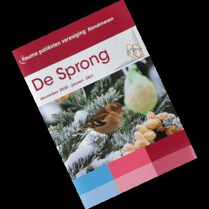 cover van de wintereditie van De Sprong van RPV Randmeren